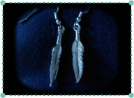 Silver Looking Feather Earrings